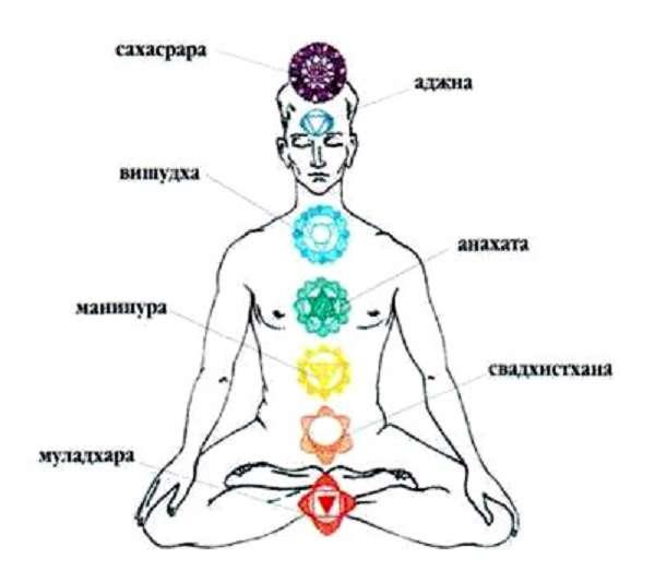 расположение и символика чакр