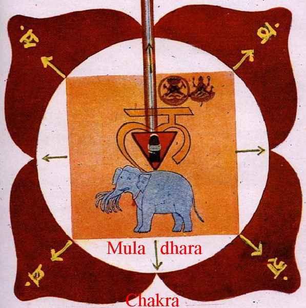Янтра Муладхары
