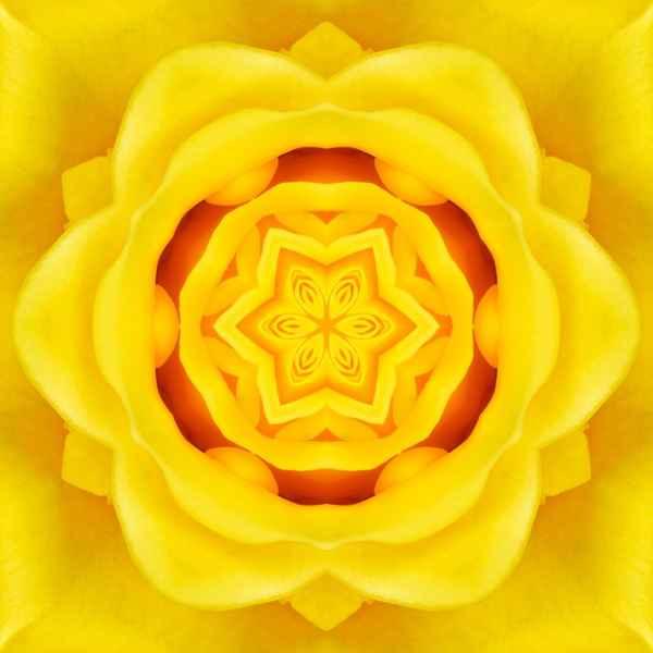 мандала с цветком