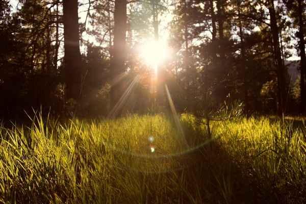 Мощные мантры исцеляющие от негатива