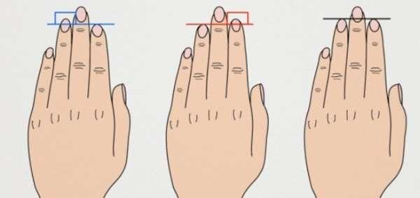 типы пальцев рук