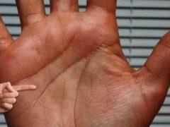 Что означают линии на руке в Хиромантии