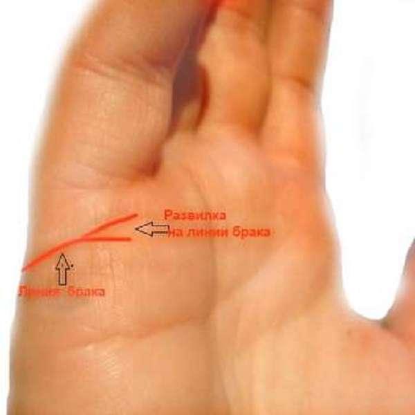 Пример раздвоения линии брака на руке