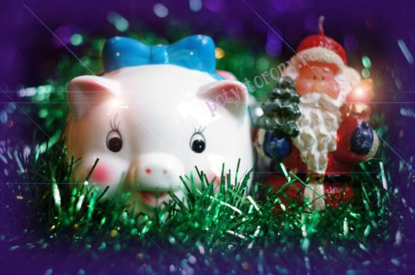 свинка и дед мороз