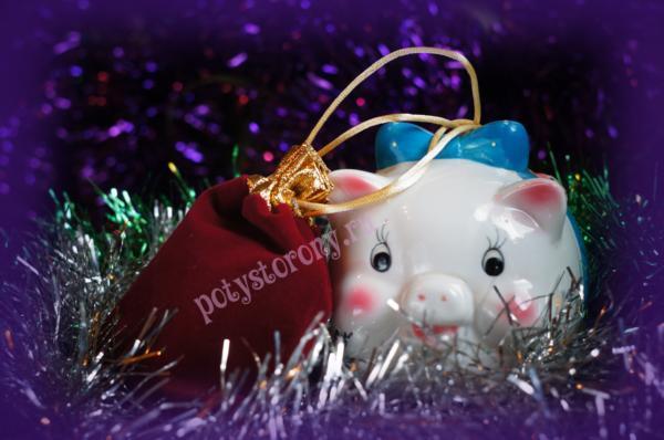 свинка и подарок