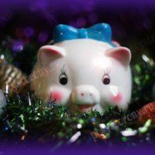 Как встретить 2019 год Желтой Свиньи? Какое животное станет хозяином, что подать к столу и как одеться