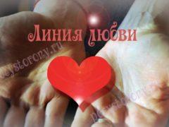 Где на руке находится линия любви и что она означает