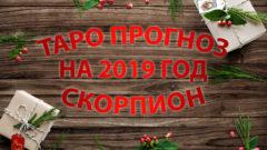 Таро прогноз для Скорпиона на 2019 год