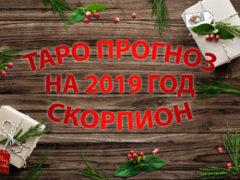 Таро гороскоп на 2019 год для Скорпионов