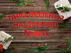 Таро гороскоп на 2019 год для Тельцов